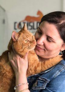 Гостиница для кошек в Видном