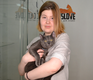 Отель для кошек в Одинцово