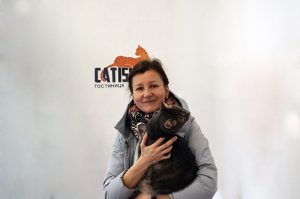 Передержка кошек в ЮЗАО