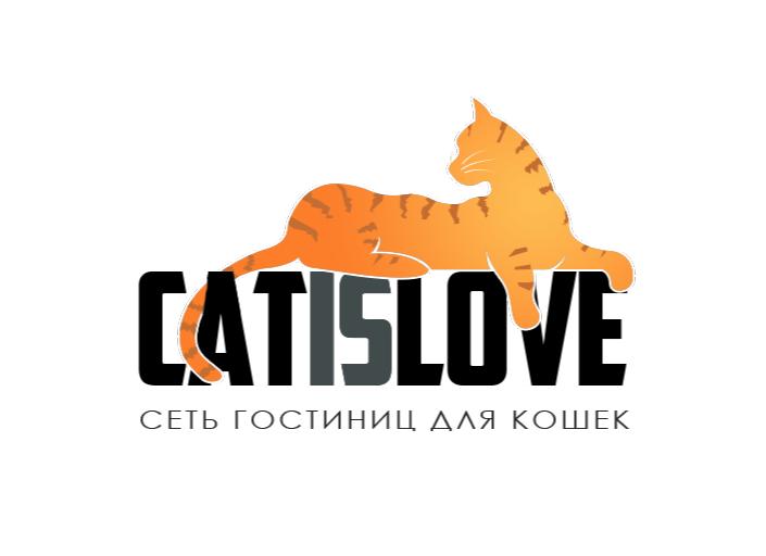 Гостиница для кошек в Долгопрудном